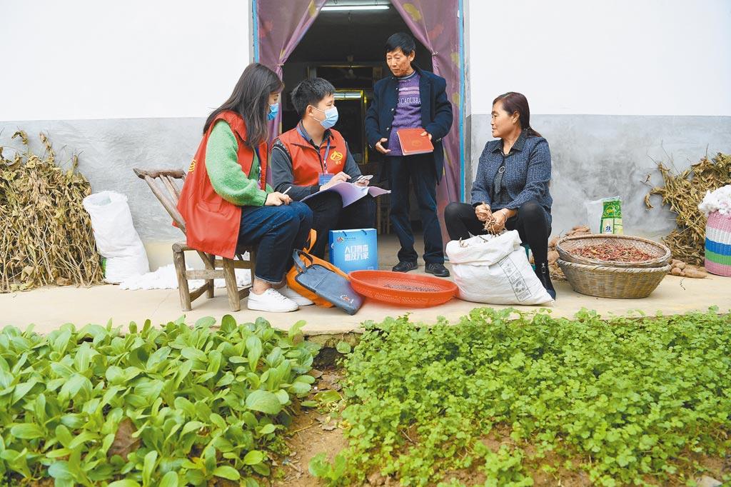 11月1日,安徽合肥市肥西縣紫蓬鎮普查員在居民家中進行登記。(新華社資料照片)