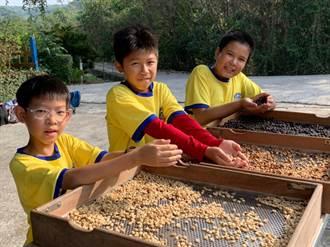 南大附小師生探索咖啡產業 樂訪雲嘉南產地