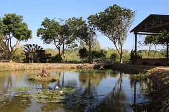 水碓發電結合綠化設計 新屋農村復古且低碳