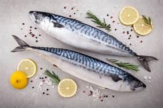 挪威鯖魚7尾300元引瘋搶 內行教1招分辨:別被騙了