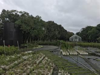 桃市推动造林计画 今年首度发布植栽指南