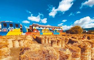 稻草捲蓋迷宮 意外成關山熱點