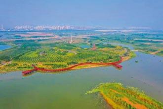 天津津南區 陸都會旅遊新據點