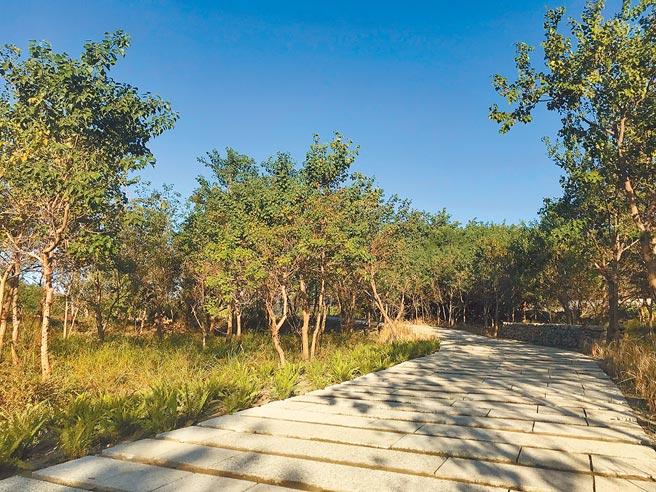 香山溼地生態公園歷經1年工程,將於本周六啟用。(邱立雅攝)