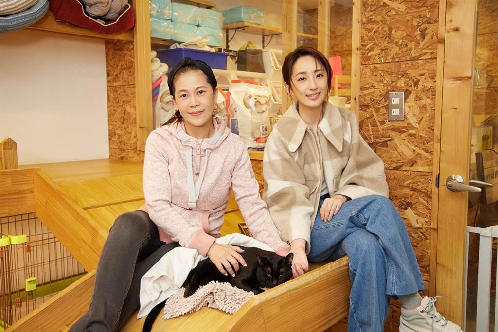 柯佳嬿與諾亞方舟動物同樂協會創辦人戈姐暢談照顧毛小孩經驗。(愛最大慈善光協會提供)