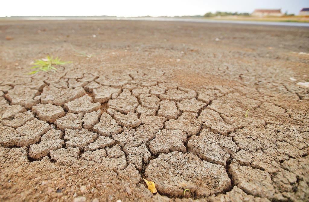 炎熱天氣造成法國呂薩蘭德斯池塘的泥漿乾裂。(路透)