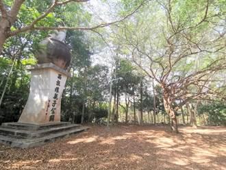 設施老舊破損 大內西拉雅親子公園淪蚊子公園