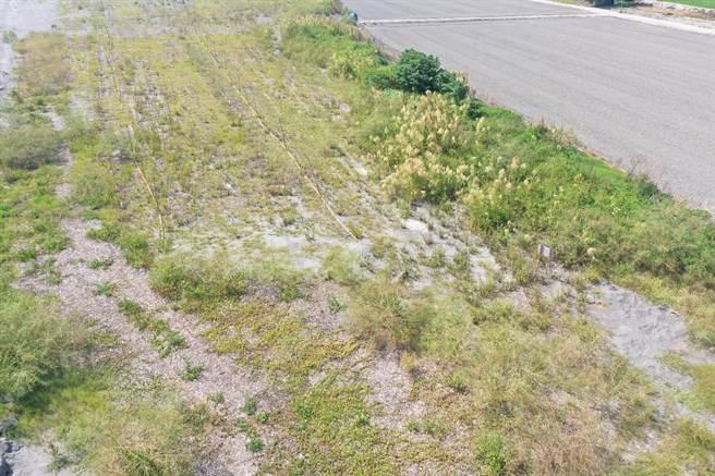 環保局針對濁水溪裸露地鋪設枯木,抑制揚塵,發揮成效。(彰化縣環保局提供/吳敏菁彰化傳真)