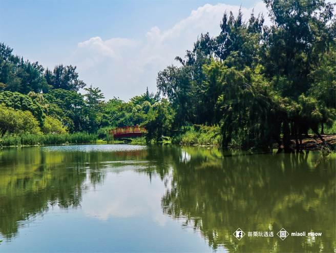 苗栗縣竹南鎮擁有豐富旅遊資源,圖為竹南海口溼地。(苗栗縣政府提供/巫靜婷苗栗傳真)