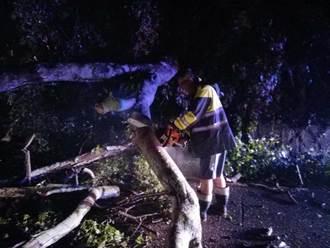 連日山區大雨路樹倒  霸氣警長持電鋸排除障礙
