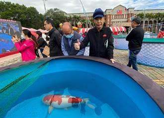 2020國際錦鯉品評會 楊裕豐「紅白」錦鯉獲「全體總冠軍」
