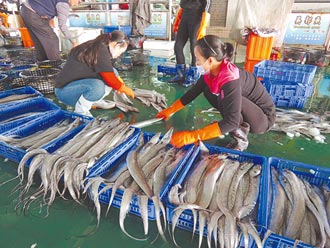 小白帶魚俗又好呷 民眾搶便宜