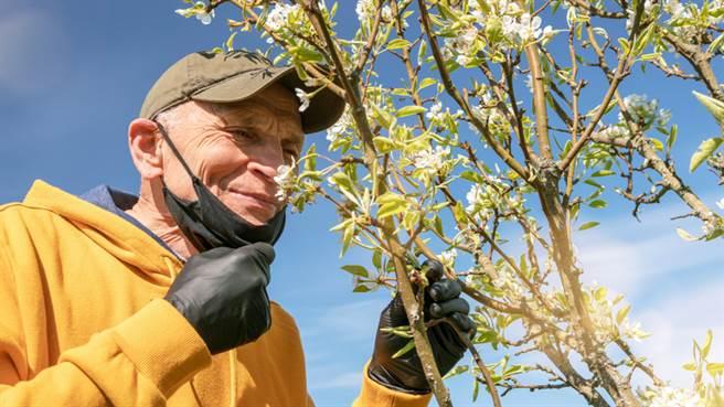 老人嗅覺下降恐致死?研究發現:有嗅覺障礙的銀髮族死亡風險增。(示意圖/常春月刊提供)