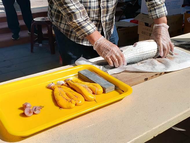 現剖烏魚取烏魚子操作教學也吸引滿滿民眾圍觀學習。(謝瓊雲攝)