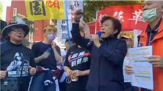 「反關台、反萊豬」 沈智慧號召民眾到立院靜坐抗議