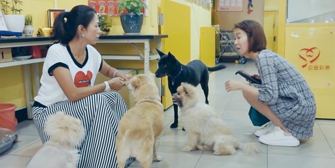「美好的所在」─桃園蔡美子彩券行不僅銷售彩券更讓流浪狗得到溫暖的家,蔡美子(左)收養流浪狗,給狗狗溫暖的家。圖/台灣彩券提供
