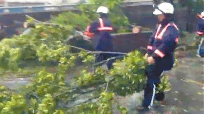 颱風還沒遠去,梅洲社區水患自主防災隊冒險清理路樹恢復交通。(梅洲社區水患自主防災隊提供/李忠一宜蘭傳真)