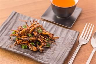 昆蟲是未來最棒蛋白質 學界卻警告背後的蟲蟲危機
