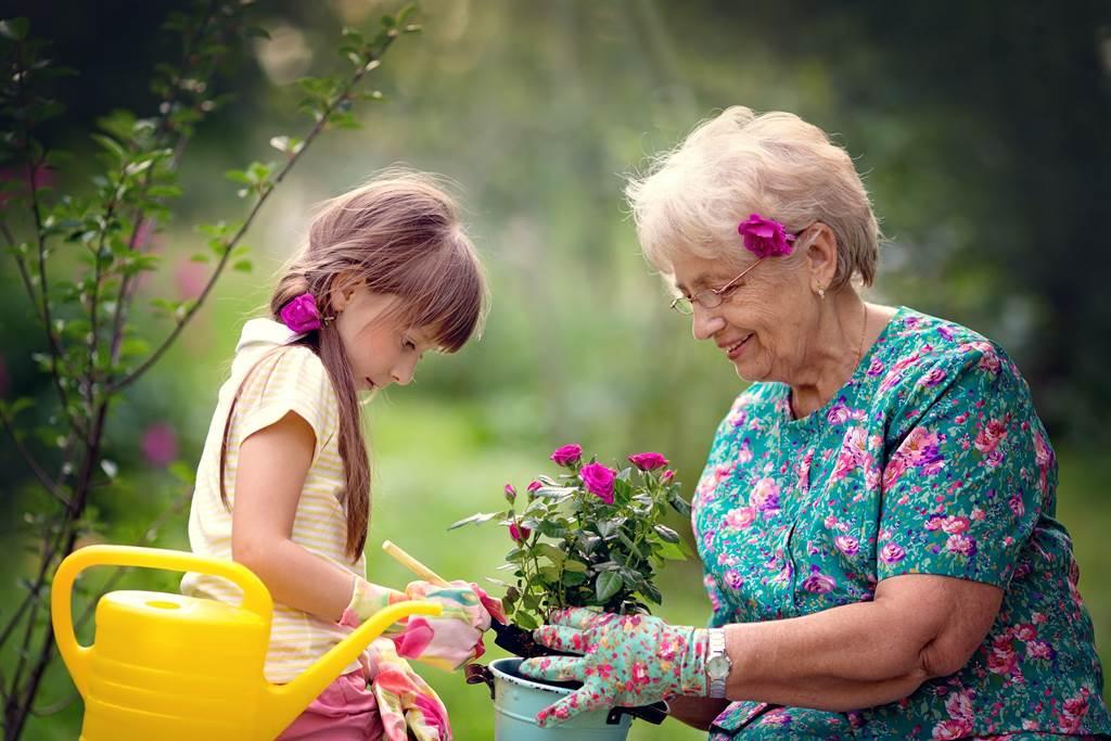 《專題報導》日本精神科醫師教你:富足退休怎麼做?「做個上流老人!」(圖/小花平台保險提供)