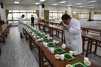 全國冬季東方美人茶比賽 頭份鄧國權再奪特等