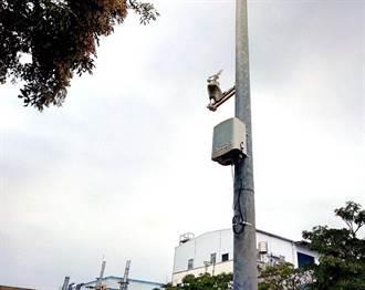 南市空品微感測器全國第三 明年將再新增500台