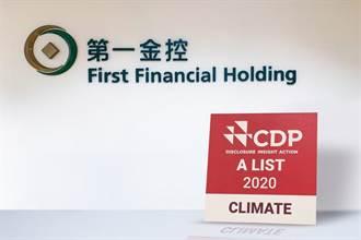 CDP氣候變遷評比 第一金控兩度獲評最高「A」級