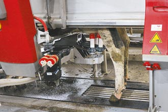 智慧農業 機器人擠牛奶比人工多15%