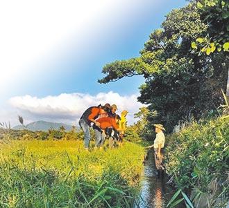 恆春生態小旅行 朝國際化發展