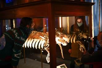 JK羅琳筆下奇獸 現身倫敦自然史博物館