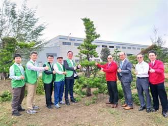 宇隆科技台中港擴廠 捐贈53顆羅漢松 為老樹找到歸宿