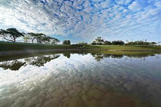 樹林河濱沐心池藏特種魚類 環境綠美化12月底揭面紗