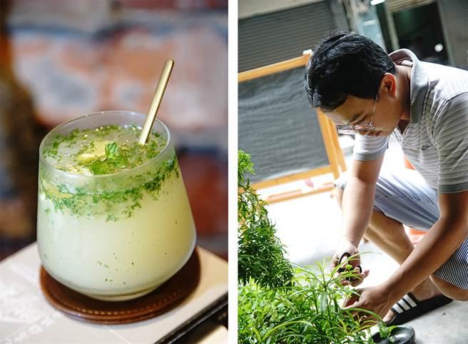 从门口鱼菜共生的系统摘取新鲜薄荷,调一杯兰姆酒香浓郁的Mojito。(摄影/曾信耀)