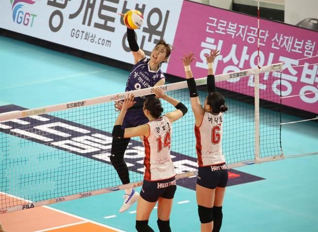 南韓女排V聯賽。(達志影像)