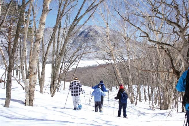 穿上「雪鞋」在白綿綿雪中健行,感受踏雪上的奇妙感。(圖/前橋市觀光振興課提供)