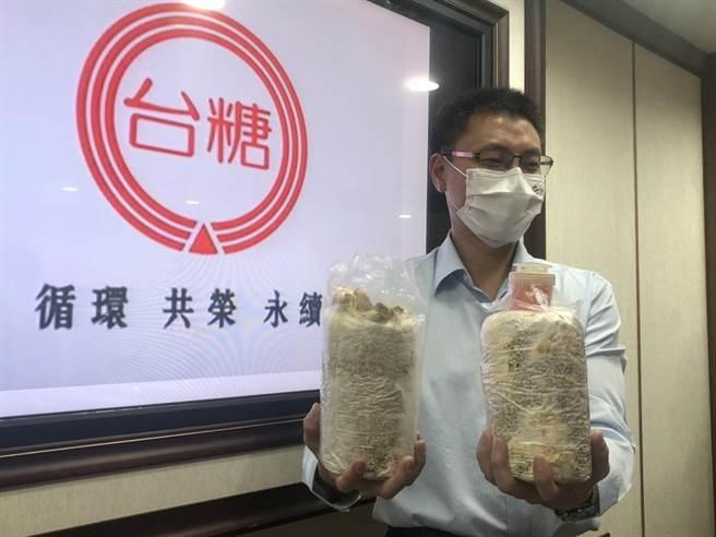 台糖循環經濟組組長張建成展示用蔗渣做成的養菇太空包,可減少一半木屑使用,又可提高菇類收成,未來擬擴大數量。(圖:王玉樹攝)