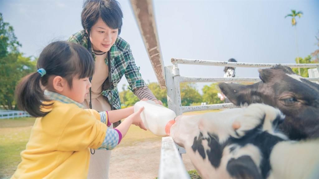 中埔有小小孩最爱的「绿盈牧场」及「独角仙农场」。(嘉义县政府提供∕吕妍庭嘉义传真)