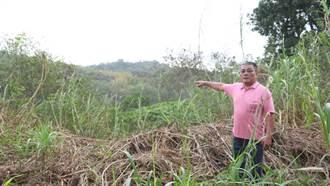 大村鄉平和村山林地將開發掩埋場 村民跳腳