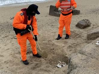 澎湖1日3起海龜死亡