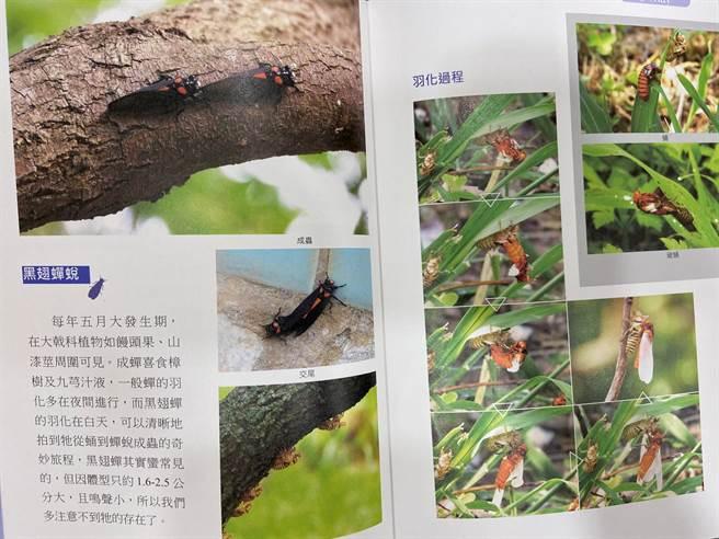 《蝴蝶、蜻蛉、鸟飞翔的科学园区》这本书能成为民眾游走园区生态的导览工具、入门图鑑。(卢金足摄)