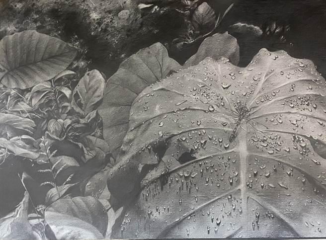林牧柔的優等作品「蜻蜓點水」,遠看如一幅荷葉的黑白照片,林花了半年刻畫水滴的動態。(東南國中提供)
