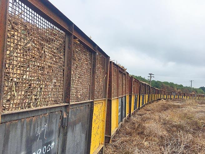 全台唯一搬运甘蔗的五分车将有4个月时间穿梭云林县虎尾镇、褒忠乡、东势乡。(周丽兰摄)