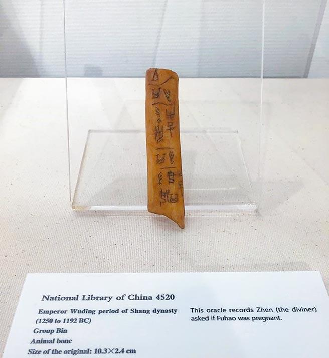 澳洲雪梨中國文化中心展出的一根刻有卜辭的商代骨尺,殘長一○‧三公分。(時報出版提供)