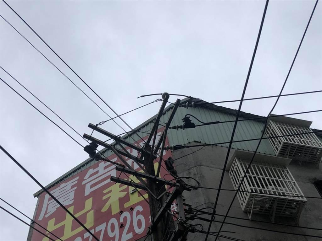 松鼠誤觸縣民大道三段高壓線路導致跳電。(台電台北南區營業處提供)