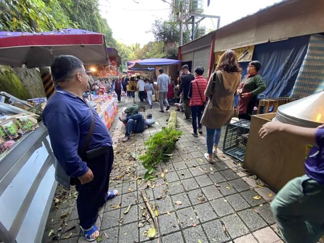 苗栗縣泰安鄉清安豆腐街遊客遭樹幹砸傷送醫嚇壞路過民眾。(民眾提供/何冠嫻苗栗傳真)