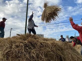 公館打造花田、堆稈棚景致迎接新年 攝影比賽紀錄農村之美