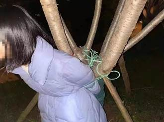 測男友真心 自綁樹上討21萬贖金沒人甩 女哭吼救命下場慘