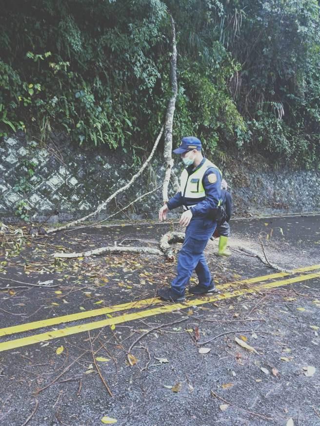 南庄苗124线道发生路树倒塌,头份警分局蓬莱所员警赶往清除。(头份警分局提供/谢明俊苗栗传真)