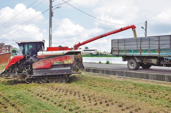 運用水稻採收機,加速採收效率。(臺南市政府農業局提供)