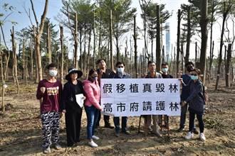 2萬棵仁武樹木遭斷頭 經發局:立即停止修剪