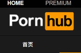 Pornhub大動作刪900萬部片 老司機哀號:最愛教師系列沒了